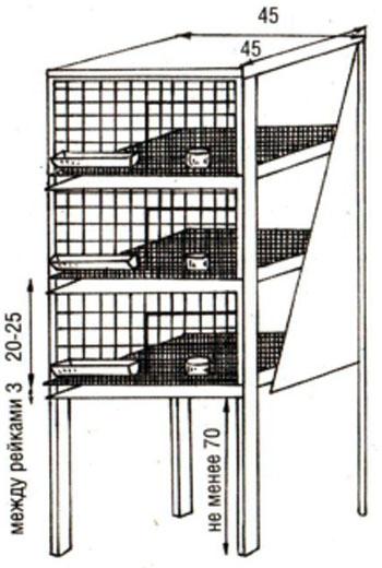 Изготовление клеток для перепелов своими руками чертежи